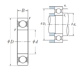 NSK 6004 deep groove ball bearings