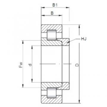 ISO NH305 cylindrical roller bearings