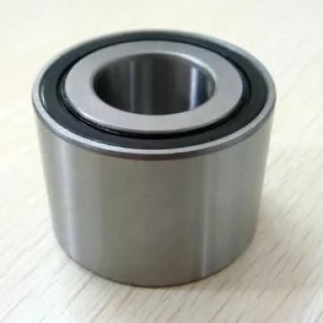 Toyana RNAO40x55x20 cylindrical roller bearings